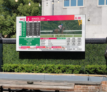 Outdoor LED sports screen at Woolpack Hotel image